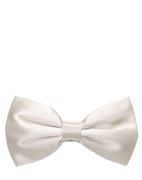 Noeud papillon blanc